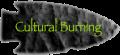 cultural-burning2