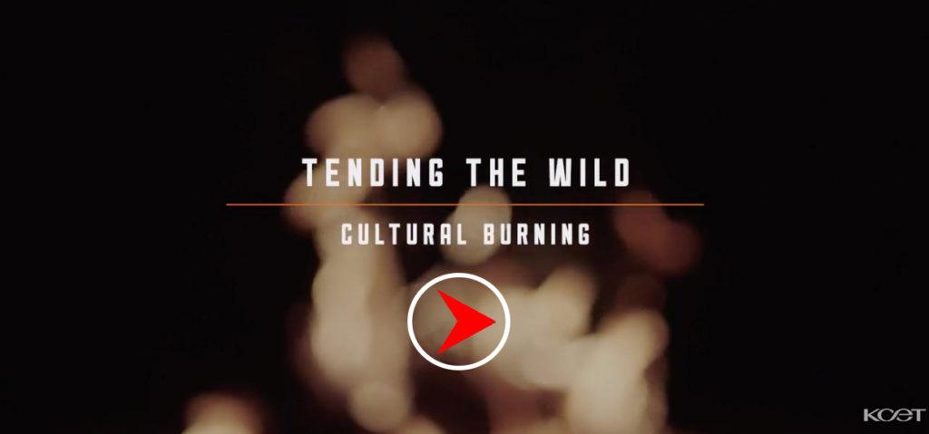 cultural-a